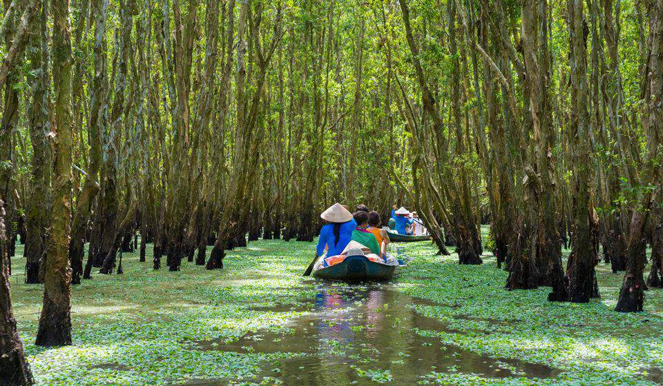 Mekong River Delta - A vast labyrinth of rivers