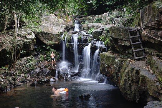 Vườn Thực Vật Phong Nha (Son Trach, Việt Nam) - Đánh giá - Tripadvisor